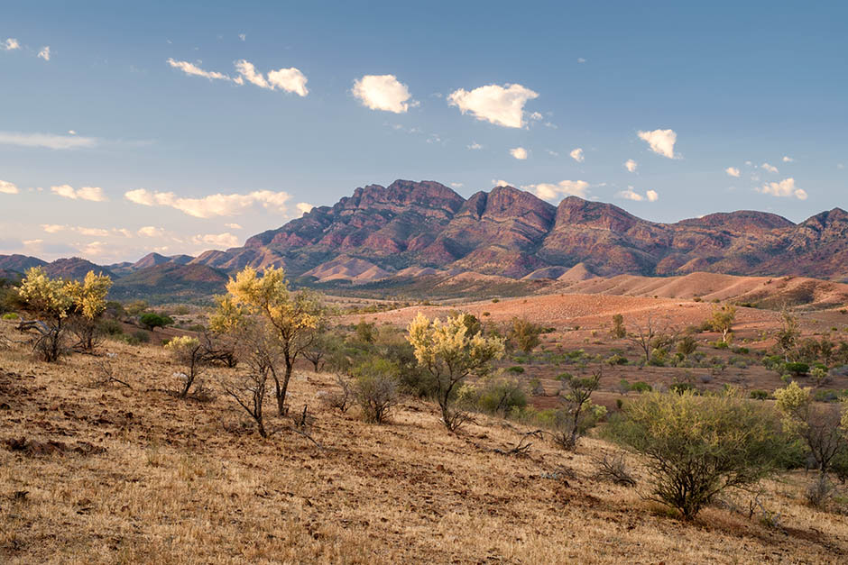 The Spectacular Flinders Ranges…No 5